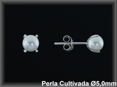 Pendientes plata rodio perla  cultivada    blanca 5 mm 4 garras -presión -